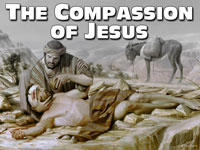 Pastor John S. Torell - sermon on THE COMPASSION OF JESUS - Resurrection Life of Jesus Church: Carmichael, CA - Sacramento County